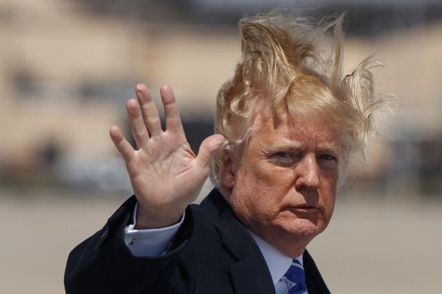 Donald Trump's Wig